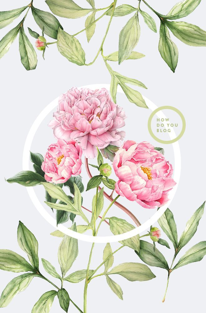 Love this graphic. Vintage flowers and simple graphics for the win! by Cocorrina