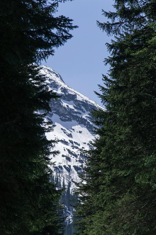 Национальный парк Дурмитор, Черногория Montenegro, Crna Gora, Durmitor