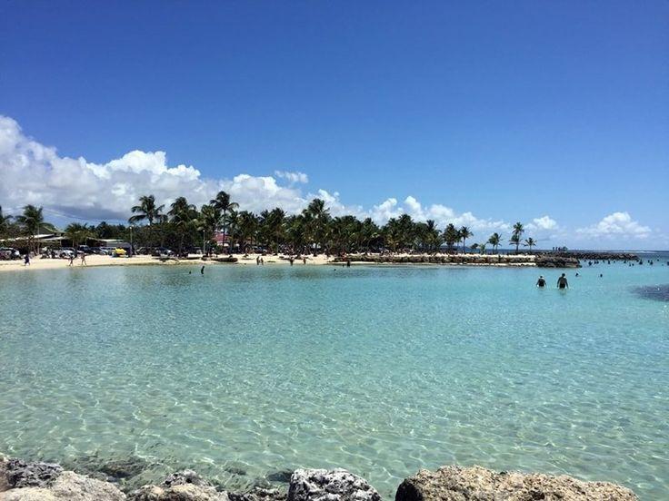 Reisebericht: Guadeloupe Landausflüge auf eigene Faust ✓ Ausflug Sainte Anne Beach ✓ Tipps und Erfahrungen einer AIDA Transatlantik Karibik Kreuzfahrt.