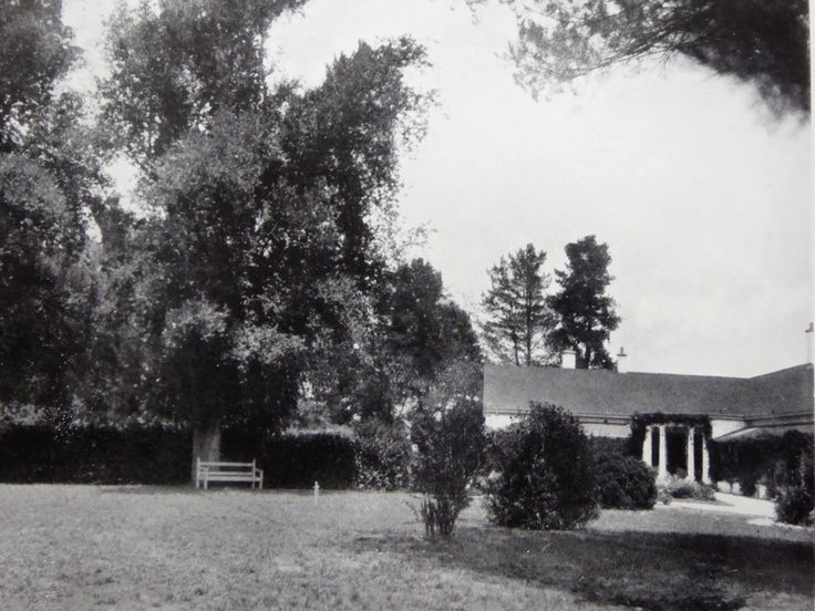 Foxlow, Bungendore, New South Wales. The Property of Franc B. S. Falkiner, Esq. Approximately 15,000 acres. Photo circa 1920. 'English Elms in the garden of the Foxlow Homestead'. Uploaded courtesy of thecollectorsbag.com