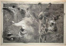 Animalarium: June 2012