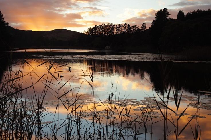 #Lake #Sunrise - Pascall Photography