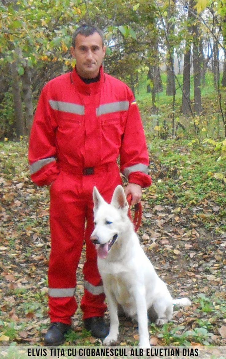 Susţin Echipa Naţională a Câinilor de Salvare