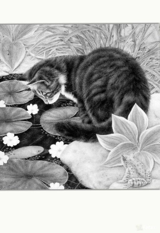 domestic cat coloring pages - photo#38