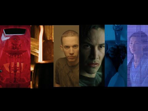 An Exploration of Color and How It Is an Important Storytelling Tool in Movies