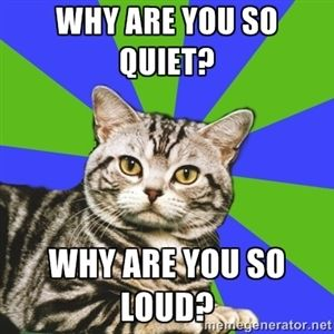 wHY ARE YOU SO QUIET? wHY ARE YOU SO LOUD? | Introvert Cat