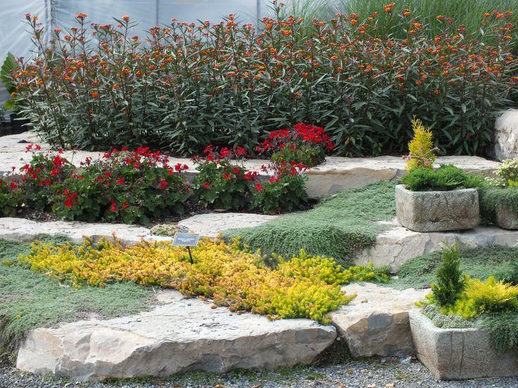 Jardin Scullion Of Jardin Jardin Scullion Pinterest