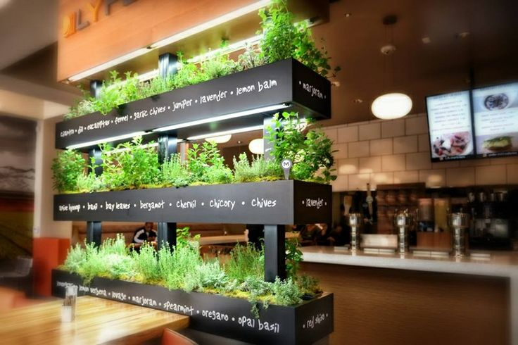 Best 25 Healthy Restaurant Design Ideas On Pinterest Plant Wall The Root Restaurant And Cafe