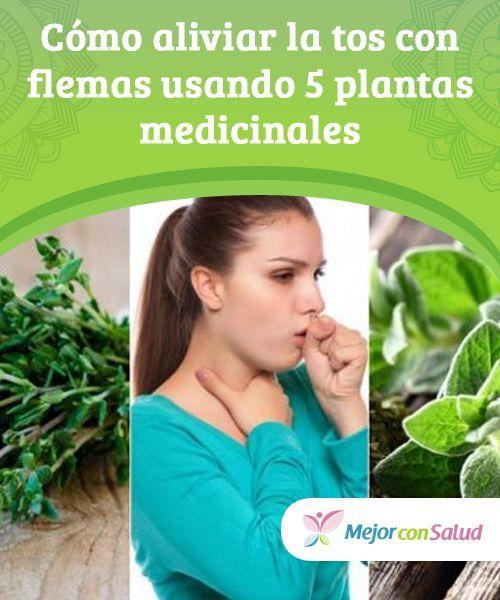 Cómo aliviar la tos con flemas usando 5 plantas medicinales Las propiedades #expectorantes de algunas plantas #medicinales nos ayuda a acelerar la #recuperación de la tos con flemas y otras molestias. ¡Conócelas! #RemediosNaturales