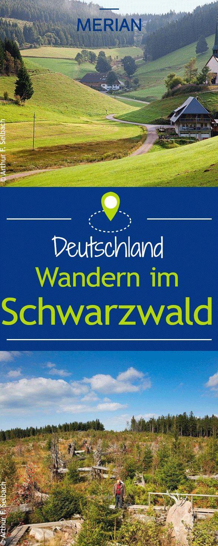 Wandern im Schwarzwald: Wir nehmen Sie mit auf eine Wanderung auf dem Westweg.   – Unterwegs mit Kids