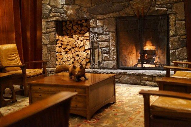 5. カナダ バンフ The Fox Hotel & Suites