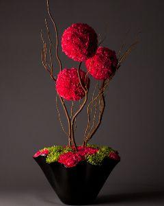 I love this arrangement ! Photo's for Canadian Florist Magazine :) Photo's by Marcel Dupuis :) Style EnVie Studios