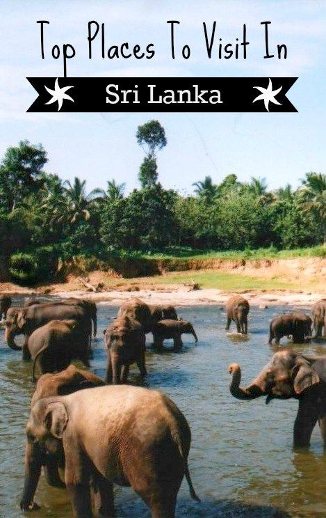 Best Places to Visit Sri Lanka
