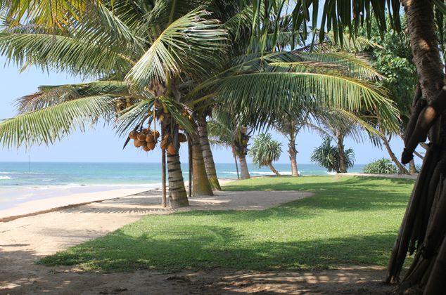 Location Villas Et Maisons Sri Lanka - Sri Lanka Je T'aime - Admin Panel