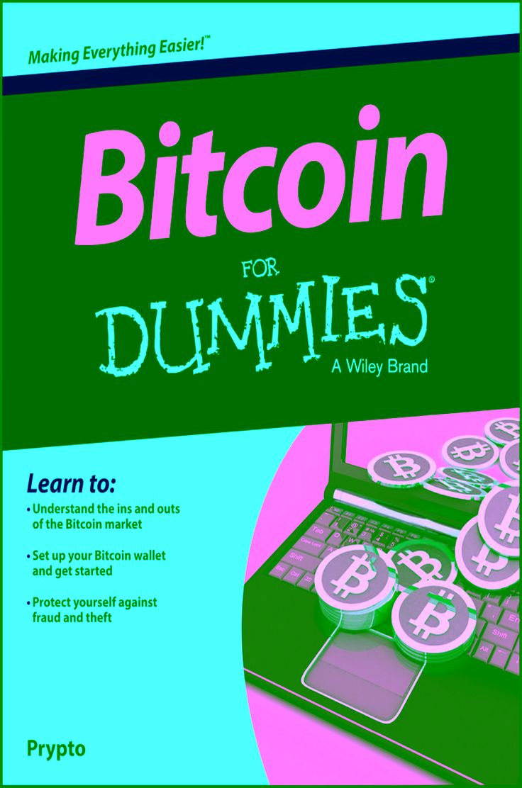 Introduction : Welcome To Bitcoin For Dummies! But Just What Is Bitcoin? How  Can