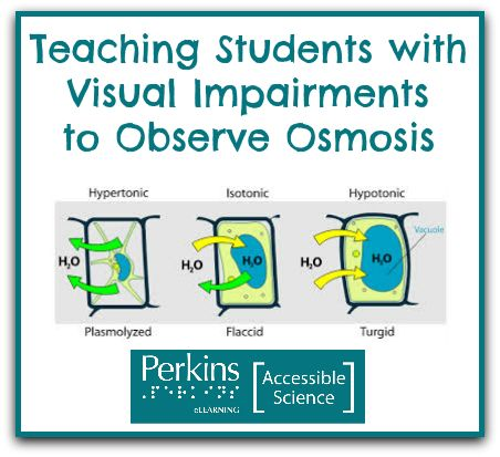 blind and vision impairment American foundation for the blind  —learn as much as you can about the student's specific visual impairment what aspects of vision are affected,.