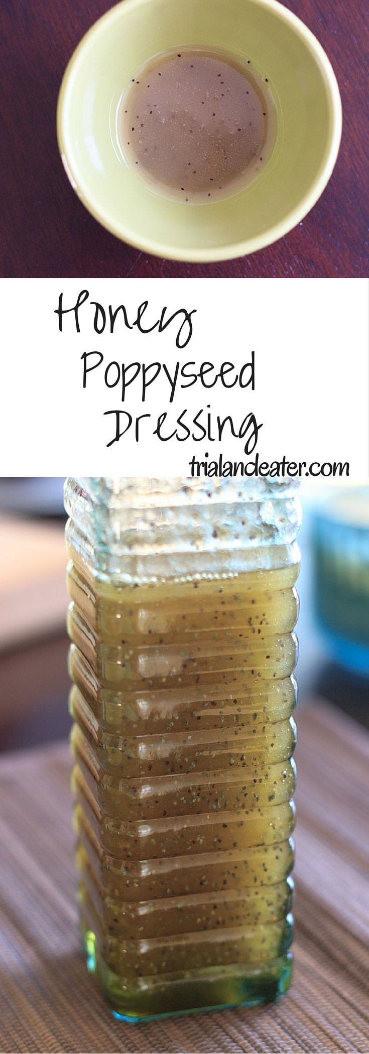 Honey Poppyseed Dressing - A slightly sweet vinaigrette dressing that goes great with fruit or salad.