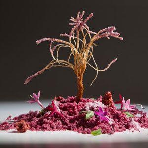 QUIQUE DACOSTA (EL POBLET) – Denia | Molecular Recipes