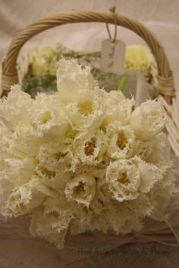 honeymoon tulip bridal bouquet by www.passionforflowers.net