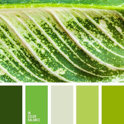 монохромная зеленая цветовая палитра, монохромная цветовая палитра, оттенки зеленого, оттенки салатового, подбор цвета, салатовый и зеленый, цвет зелени, цвет свежей зелени, цвет травы, цветовое решение для дизайна, цветовые сочетания.