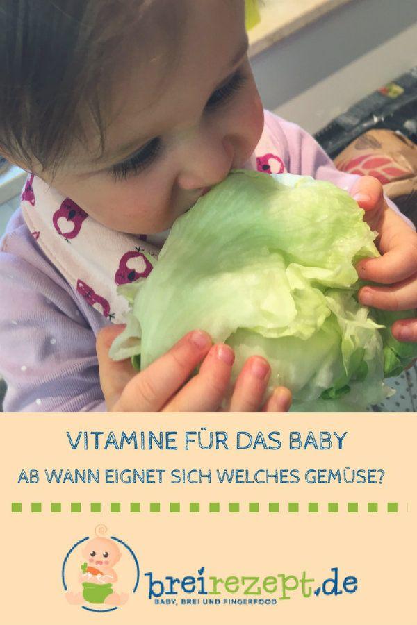 Gemüsesorten für das Baby. Ab wann eignen sich Möhren, Avocado, Kohlrabi, Rot… – Beikost, Babybrei & BLW – breirezept.de