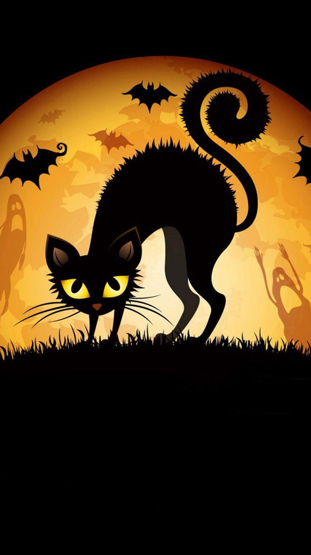 Great Wallpaper Halloween Ipod 5 - 3b24855ad85e6343ab5784374ad7ef16--halloween-cat-vintage-halloween  Photograph_76755.jpg