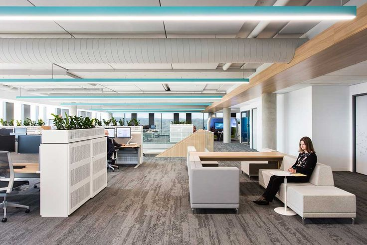 This global science-led pharmaceutical company has adopted agile thinking for their new Sydney office, designed by Futurespace.