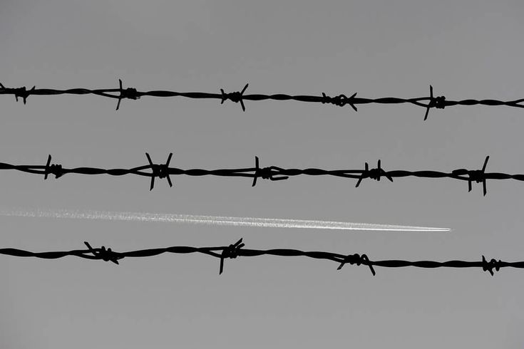 barbed-wire-3244121_960_720