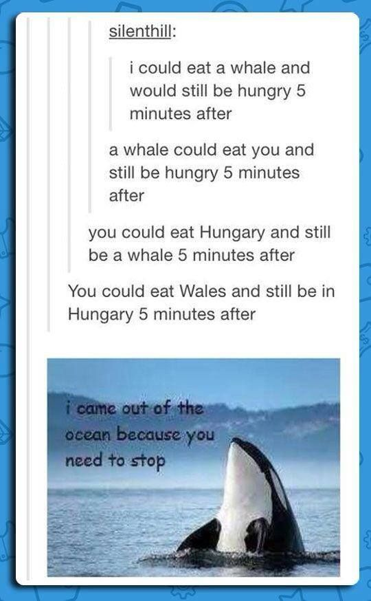 Whales | I came out of the ocean because you need to stop