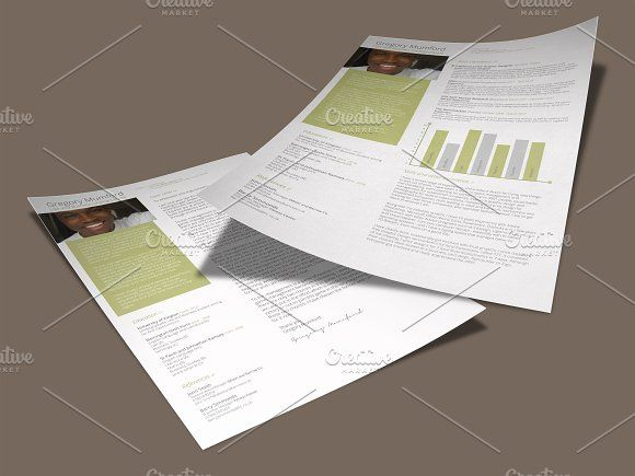 1000+ Ideas About Executive Resume Template On Pinterest
