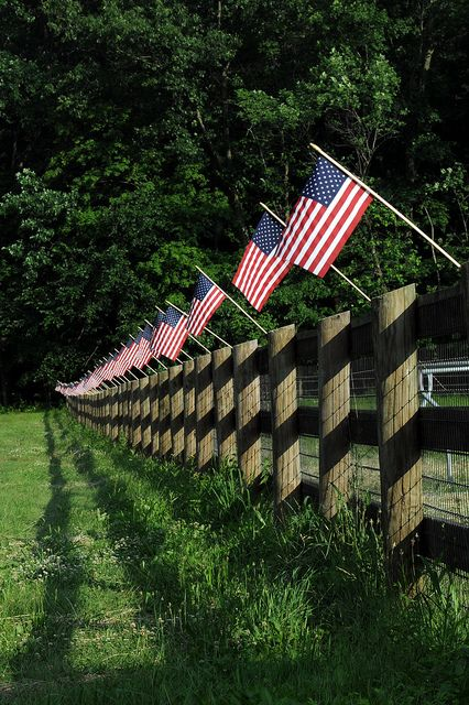 flag fenceBlessed America, American Pride, Blue, God Blessed, July, American Flags Fence, 4Th, Red White, Usa