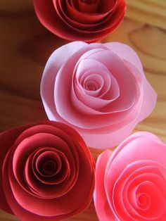 Papierrosen Anleitung auf deutsch / Paper roses tutorial in german