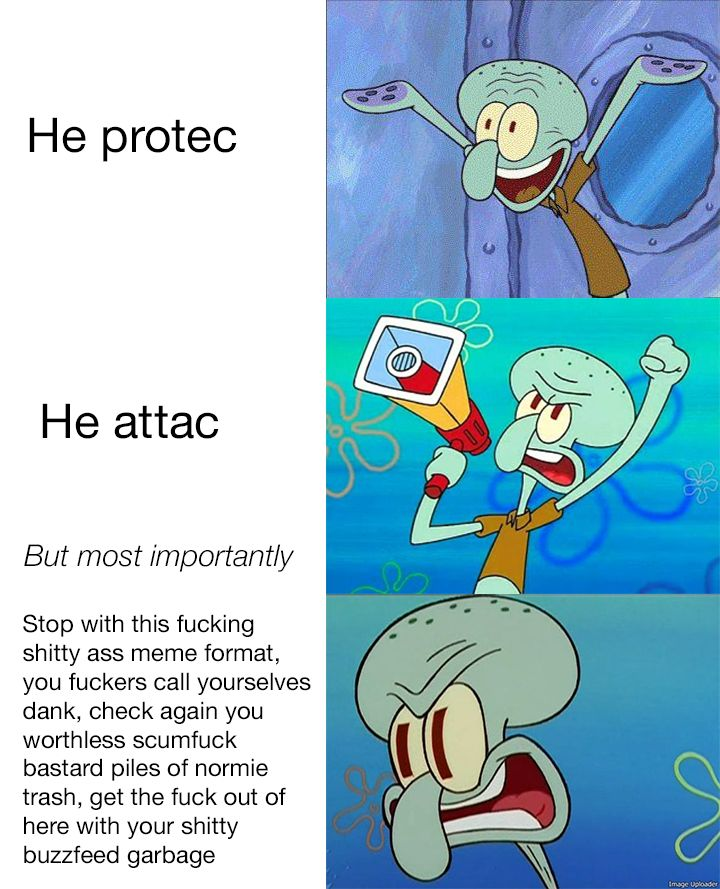 He Protec But She Also Attack Cat Meme