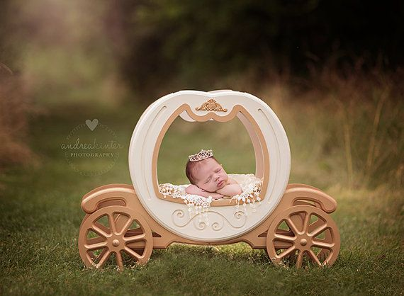 Princess carriage prop carriage prop cinderella carriage prop newborn photo prop newborn photography prop