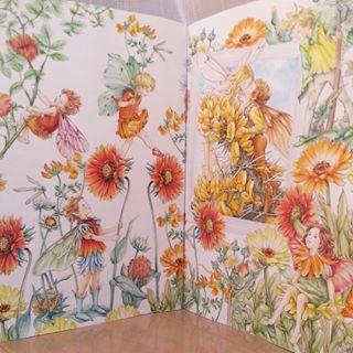 Browse shizuzuzuk's Instagram . 〔FAIRIES全体〕。 . 夏色の妖精達が出来上がりました。 今回も特に変えず、お手本を真似しました(๑´`๑)♡。 . 全体撮るの本当に下手くそで、ぼやけちゃって見にくくて御免なさいm(._.)m。 . 2016/8/12。 . #flowerfairies #シシリーメアリーバーカー #lineartbook #フラワーフェアリーズ #コロリアージュ  #大人の塗り絵  #大人のぬりえ #색칠공부 #著色 #著色本 #colorpencil #coloringbooks #coloriage #coloringbook #adultcoloring #adultcoloringbook 1315062807402482767_2459362795