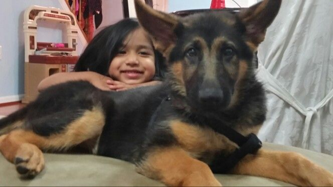 My 2 yrs old daughter Farrah and my 4 months old puppy Max