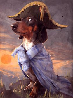 Dachpoleon. Seriously, this is all you need to know about dachshunds. (Although I'm a huge fan of Napoleon complex in my dog, not so much in men.)