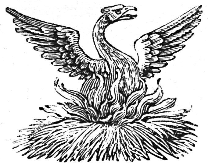 phoenix2.jpg (682×552)