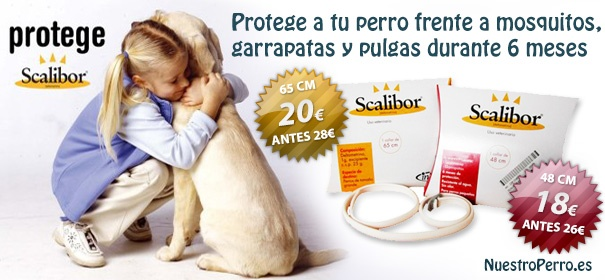 Promocion collar antiparasitario Scalibor