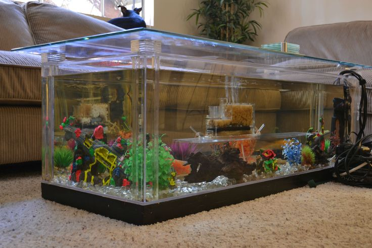 29 best images about fintastic modern fish tanks on for Coffee table fish tank for sale