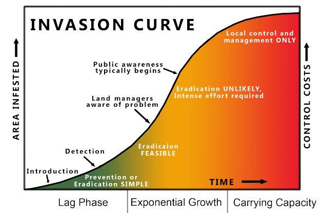 Invasion Curve - Invasive Species