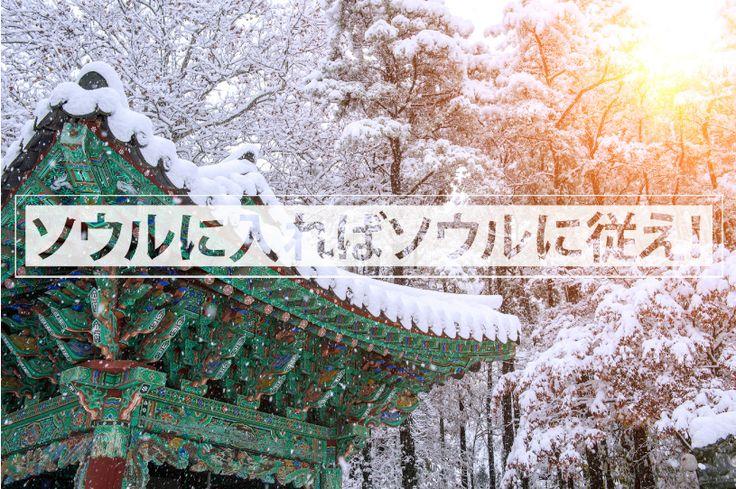 人々が活発に行き交う大都市、ソウル。壮大な王宮から由緒ある広大な市場まで、長い歴史に培われた豊かな文化が今も息づいています。その歴史を紐解き、伝統文化にゆったりと身を浸しましょう。
