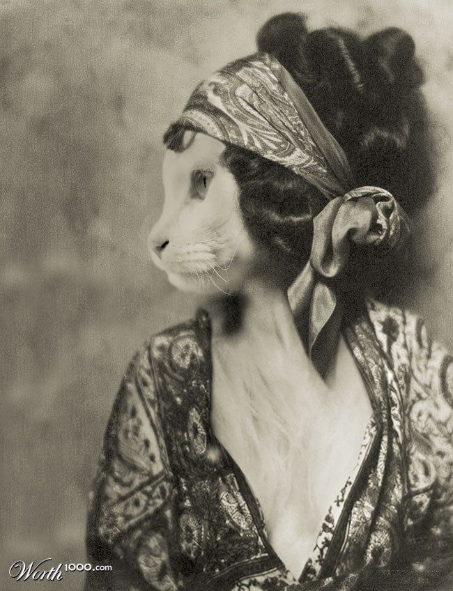 """""""La Chatte"""" anthropomorphic altered photo by Bainay - 10th place entry in Animal Renaissance 16"""