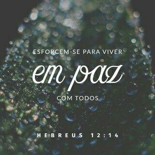 Hebreus 12:14