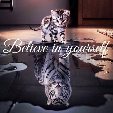 http://blog.buzvil.com/2016/04/07/believe-in-yourself/