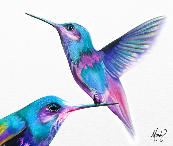 Hummingbirds - Inktense pencils on Stonehenge paper - by Monica Moody