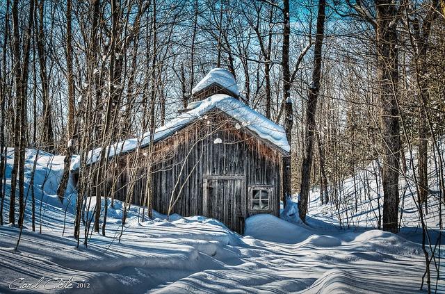 cabane à sucre dans la neige