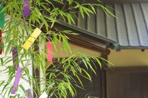七夕といえば笹飾り。ところで、笹飾りにはそれぞれ願いがこめられているのをご存じですか? また、日本には笹飾り以外にもいろいろな七夕飾りがあります。今年は、日本各地の伝統に触れながら、新たな気持ちでお飾りを作ってみてはいかがでしょうか。