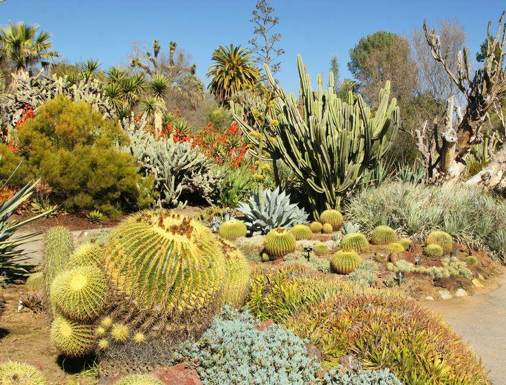 Et si on mettait un peu d'exotisme dans son jardin ? Réalisez un jardin mexicain pour voyager un peu chaque jour sous le soleil de Mexico !