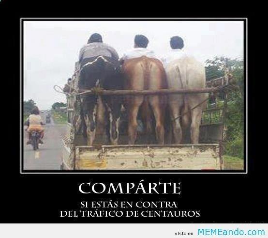 Desmotivaciones   Memes Para Facebook en Español ->> MEMEando.com